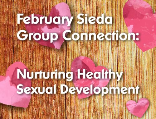 Sieda MIECHV, PAT, FaDSS February Group Connection