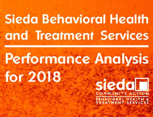 Behavioral Health and Treatment Services 2018 Performance Analysis