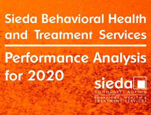 Behavioral Health and Treatment Services 2020 Performance Analysis